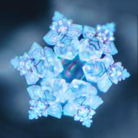 wasserkristall multipure + senseh